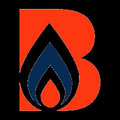 Bog Standard Plumbing