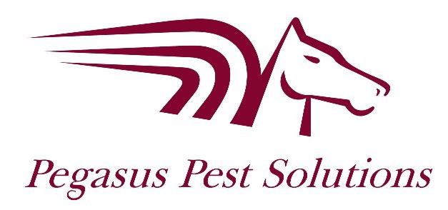 Pegasus Pest Solutions Verified Logo
